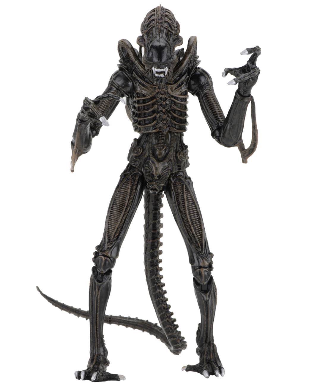 ALIEN MARRON ULTIMATE ALIENS WARRIOR 1986 FIGURA 23 CM SCALE ACTION FIGURE ALIENS