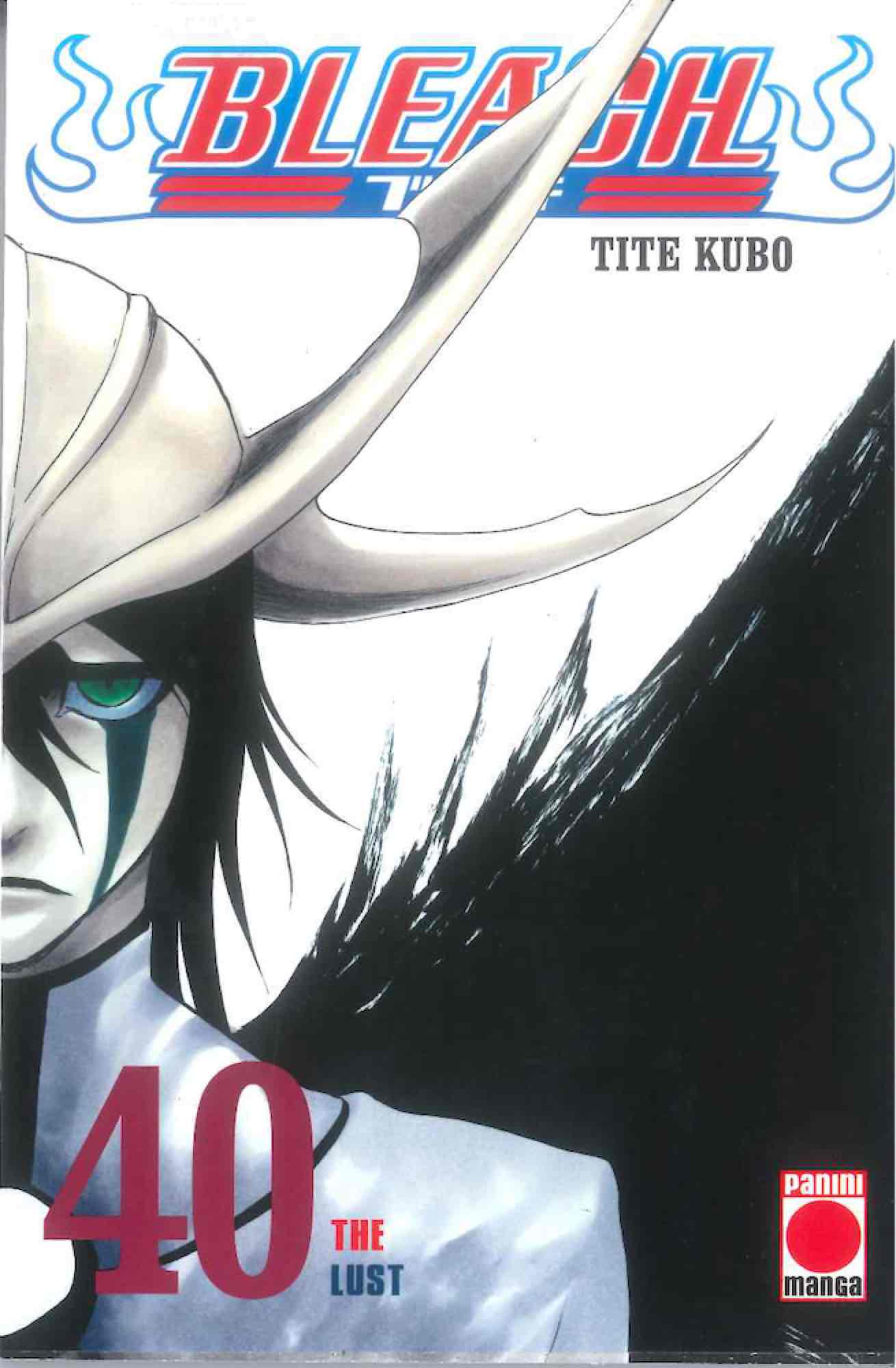 BLEACH 40 (COMIC)