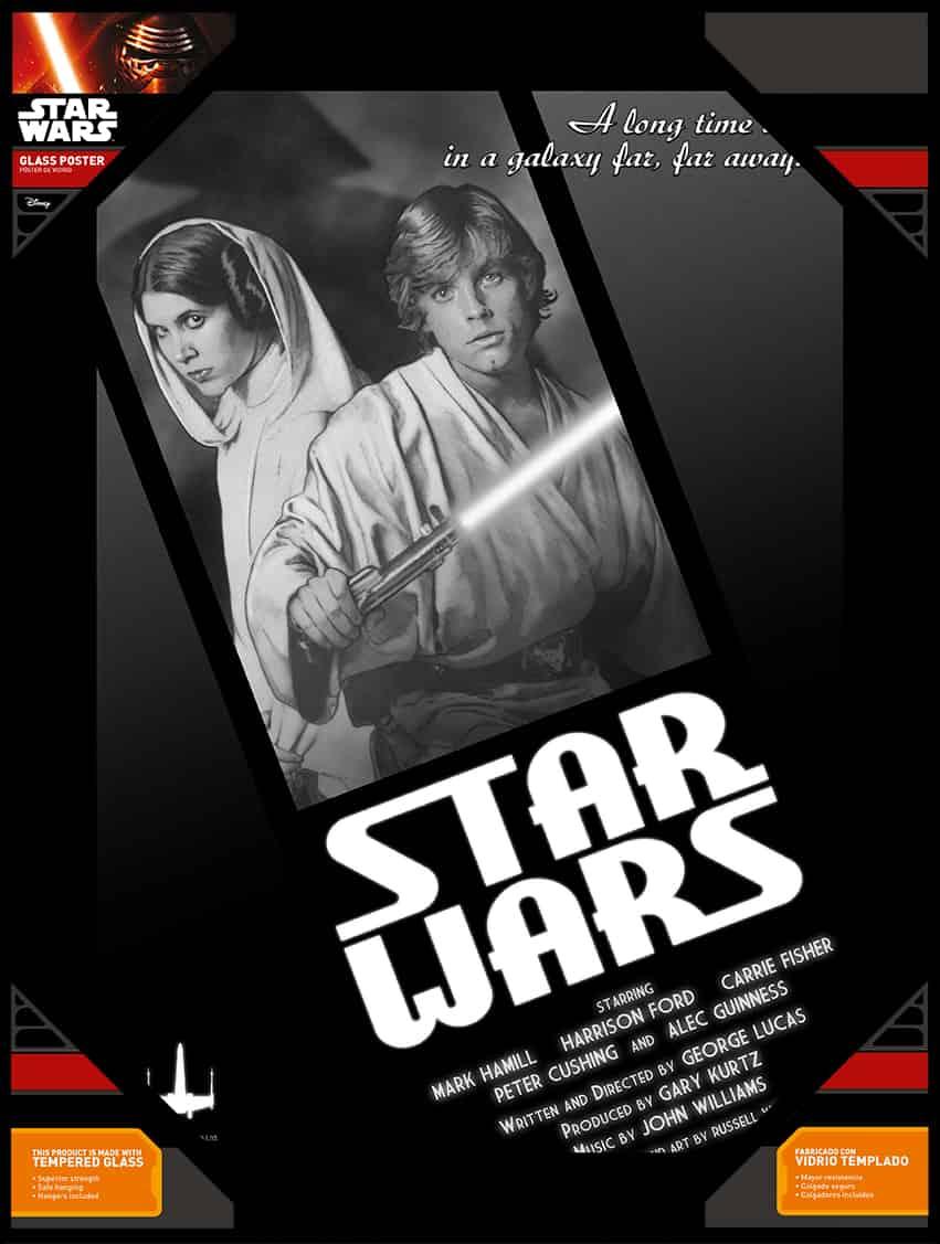 O.FLASH - LUKE Y LEIA BLANCO Y NEGRO POSTER DE VIDRIO STAR WARS 30x40 CM